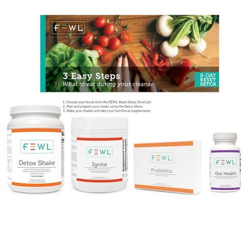 8 day detox - Wordpress Website Makeover Customer Highlight: FEWL